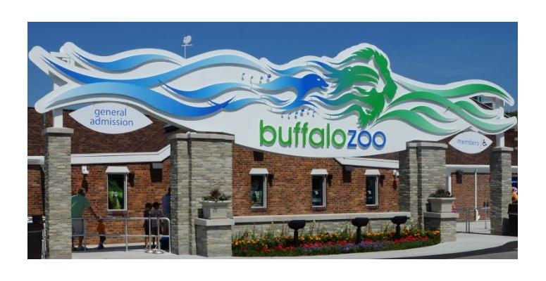 Flashback Buffalo Zoo A Greene 39 S Adventures